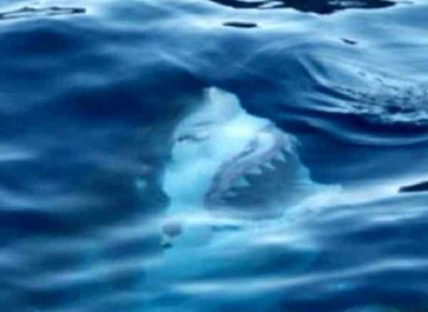 Baisi ūdens foto